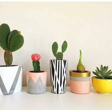 concrete succulent holders instead of using paint to decorate you