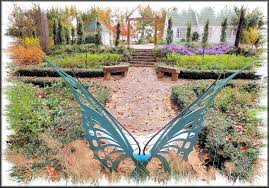 Butterfly Bench The Butterfly Bench In Mimi U0027s Garden At The Sfa Pineywoods Native