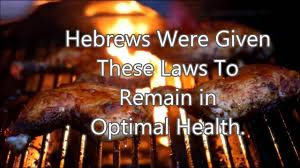 part 1 hebrew israelite kosher diet laws of the torah u0026 bible