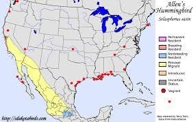 map of allen allen s hummingbird species range map