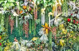 artificial vertical garden wall u2014 stock photo piyachok 95822750