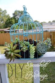 Home Decor Bird Cages Best 25 Birdcage Planter Ideas On Pinterest Succulent Display