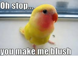 Oh Stop It Meme - 25 best memes about oh stop you make me blush oh stop you make