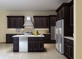 Mocha Shaker Kitchen Cabinets Kitchen Cabinets And Bathroom Cabinetry