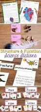 37 best science grade 4 images on pinterest teaching science