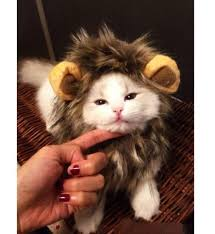dogloveit pet costume lion mane wig dog cat halloween dress