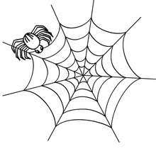 spider hanging from a thread coloring pages hellokids com