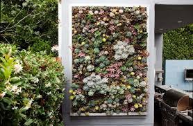 great living wall diy vertical garden 17 best ideas about living