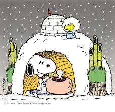 happy thanksgiving charlie brown quotes snoopy u0026 woodstock in an igloo snoopy u0026 woodstock pinterest