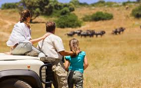 best family trips for safari tours