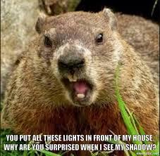 Groundhog Meme - a groundhog s day meme by me funny memes pinterest meme