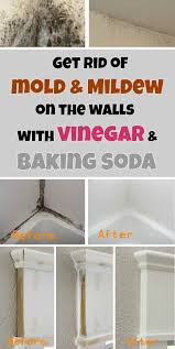 get rid of mold u0026 mildew on the walls with vinegar and baking soda