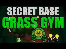 Pokemon Emerald Pretty Chair Super Secret Base Grass Gym Grass Themed Gym Decoration Guide