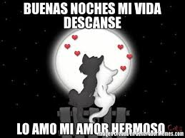 imágenes graciosas de buenas noches mi amor buenas noches mi vida descanse lo amo mi amor hermoso meme de