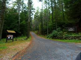 Massachusetts forest images Central massachusetts campgrounds camping central massachusetts jpg