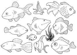 coloring pages about fish fish coloring image tenaciouscomics com