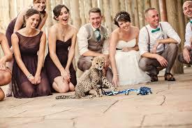 columbus zoo wedding columbus zoo and aquarium venue powell oh weddingwire