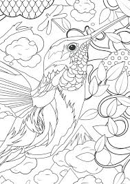 coloring pages printable color number pages adults