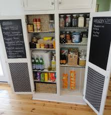 Kitchen Pantry Organizer Systems Tempting Pantry Shelving Systems Storage Pantry Withdoors Pantry