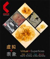 ma premi鑽e cuisine 虚拟 表象 王焱田子仲刘峥杨小兵四人联展 展览 artlinkart 中国
