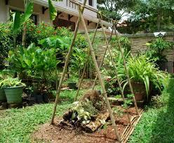 wall herb garden tags vertical vegetable gardening ideas ideas