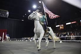 Horse With American Flag About The Gala Of The Royal Horses