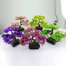 popular bonsai home decoration plants buy cheap bonsai home