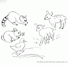 coloring download land animals coloring pages land animals