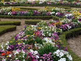 Flower Gardens Wallpapers - flowers for flower lovers flowers garden wallpapers