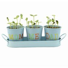 novelty planters novelty planters suppliers and manufacturers at
