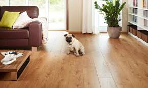 Laminate Flooring Good For Dogs The Best Flooring For Dogs U2013 Looking For The Perfect Option