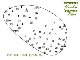 butterfly garden plan how to attract those beautiful garden insects