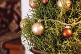 Decorations For Mini Christmas Tree by Christmas Decorating Ideas 3 Ways To Decorate Mini Trees