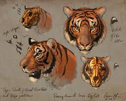 how to draw big cats drawing course by aaron blaise