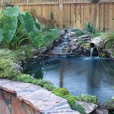 Small Water Ponds Backyard 120 Best Ponds Images On Pinterest Pond Ideas Backyard Ponds