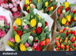 flower wholesale tulips flowers wholesale market stock photo 589704767