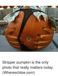 Pumpkin Meme - 25 best memes about stripper pumpkin stripper pumpkin memes
