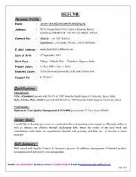 exle of personal resume personal profile in resume exle exles of resumes