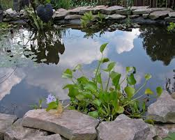 download unique garden water fountains solidaria garden