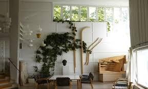 indoor vine plant how to grow indoor vines tips