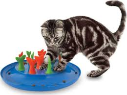 top 8 cat toys of 2017 review