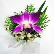 Orchid Corsage Omy Florists Orchid Corsage Add On Only No Delivery