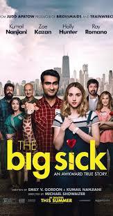the big sick 2017 imdb