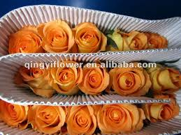 Wholesale Fresh Flowers High Grade Fresh Cut Flower Wholesale Buy Fresh Cut Flowers