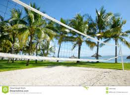 sport volleyball grass stock photos images u0026 pictures 224 images