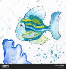 fish blue coral watercolor image u0026 photo bigstock