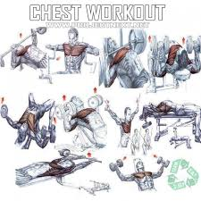 Weight Bench Workout Plan Chest Workout Plan Healthy Fitness Core Arm Training Routine