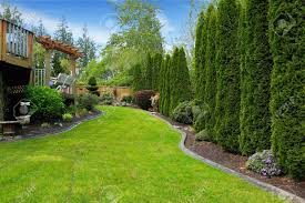 fenced backyard with landscape decorative trees alongside with