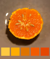Colors Orange Into The World Of Colours 2 Looking For The Jam Of The Artist