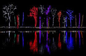 Zoo Lights Phoenix Phoenix Zoo Lights 2016 Laura U0027s Palette